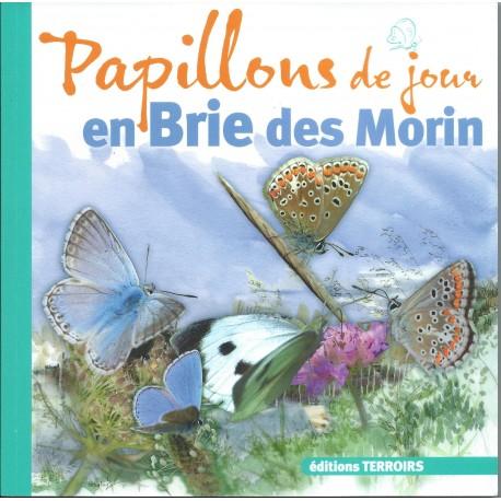 Papillons de jour en Brie des Morin